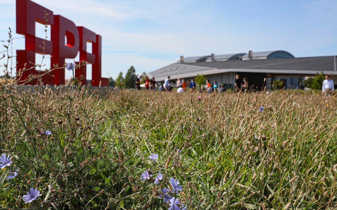 EPFL Diverses réalisations et travaux d'entretien